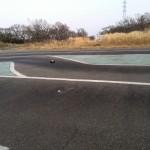 デューンバギー オンロードサーキット走行